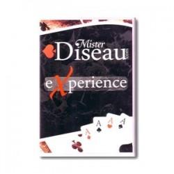 Sordellini Mister Diseau Experience