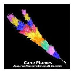 Cane Plumes - Regular - Ft