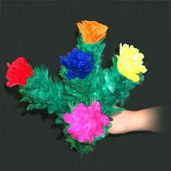 Fiori che sbocciano. 5 fiori