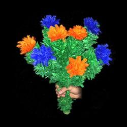 Fiori che sbocciano 8 fiori