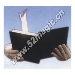 Dove & Fire Book