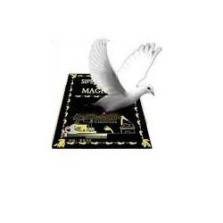 Dove from book magic