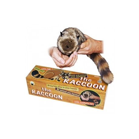 The Raccoon - 100% pelo sintetico